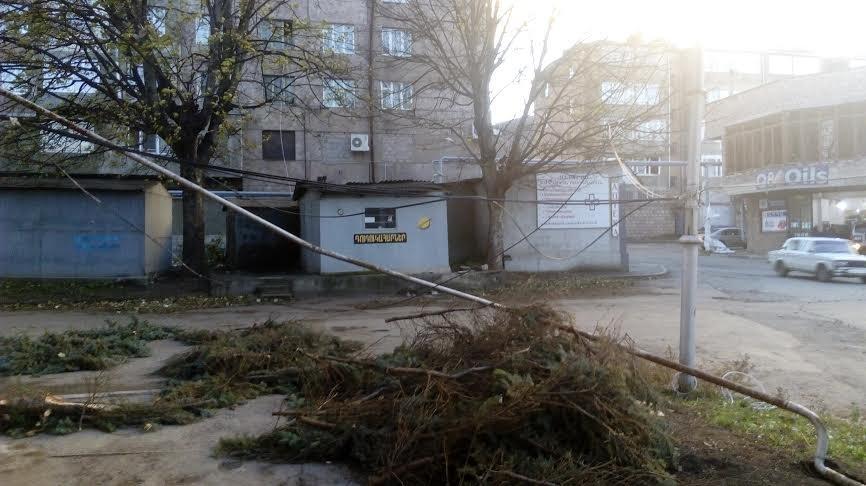 В Ванадзоре ветер сломал деревья