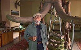 Հայաստանում պահպանվել են Սարմատյան ծովի հետքերը